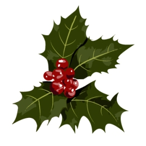 real christmas holly